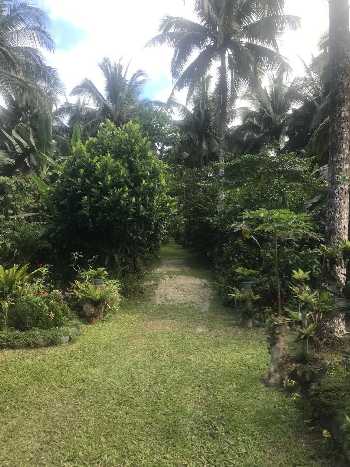 RV Cacao Farm