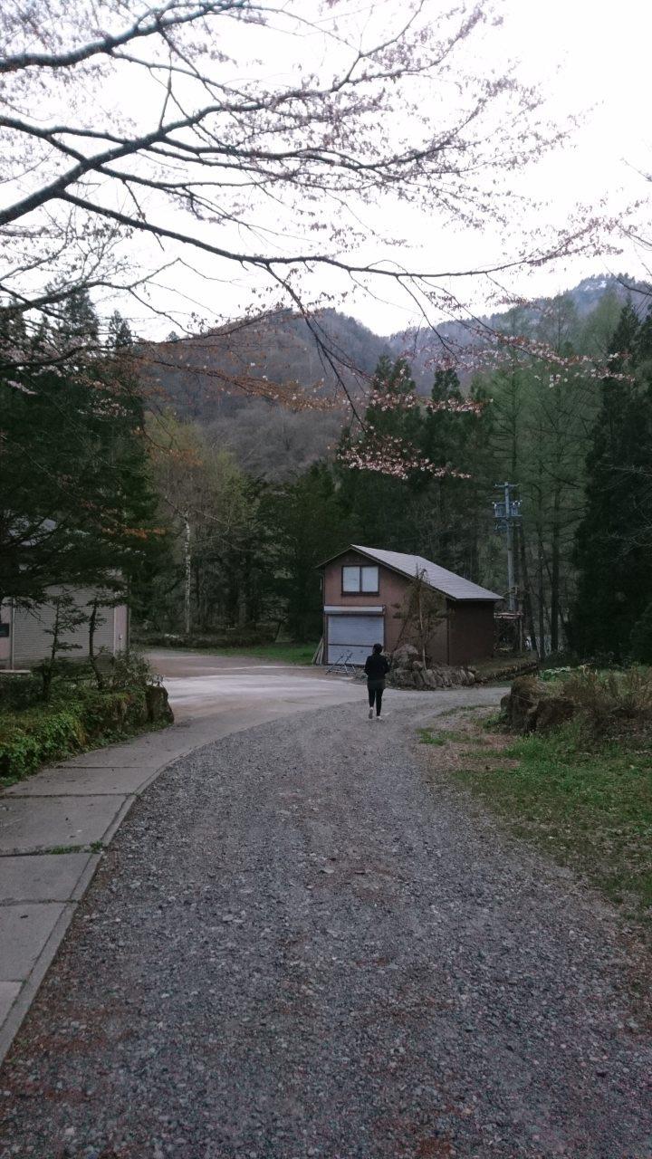 Hirayu Onsen: our BnB's backyard